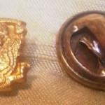 Coat of Arms Pin